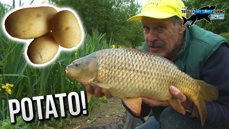 All carp anglers need to try different baits and in this episode Graeme Pullen shows you the top big carp bait that was all the rage before boilies were even