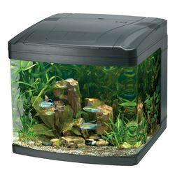 freshwater aquarium biocube | Desktop Aquarium Kits -- Oceanic BioCube Aquarium Systems