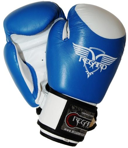 http://www.profighters.sk/profighters/eshop/52-1-REGARD/57-2-Box-a-MMA-rukavice-REGARD/5/2445-Boxerske-rukavice-REGARD-PREMIER-s-tercikom-koza-modre