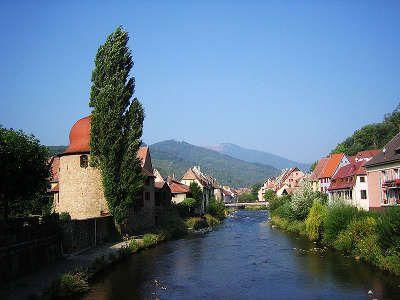 Sur la Route des Vins d'Alsace, entre Thann et Orschwihr, le vignoble se fait plus escarpé. Autour de Thann et de Guebwiller, les vignes se concentrent sur les versants pentus et imposent souvent aux vendangeurs de s'encorder.
