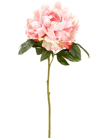 Get faux wedding flowers that are budget-friendly and a hassle-free alternative to fresh flowers like this pretty pastel pink silk peony flower. This gorgeous pastel pink peony is perfect to give your