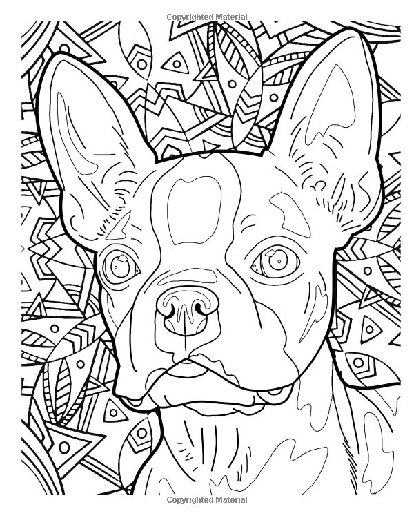 Beautiful Dog Breeds Adult Coloring Book Wild Color Volume 2