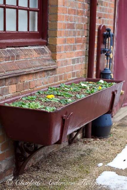 Garden Flow: English gardens