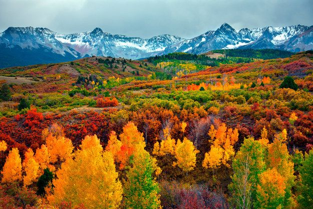 """Autumn in The Rocky Mountains of Colorado is often referred to as """"The Changing of the Colors."""""""
