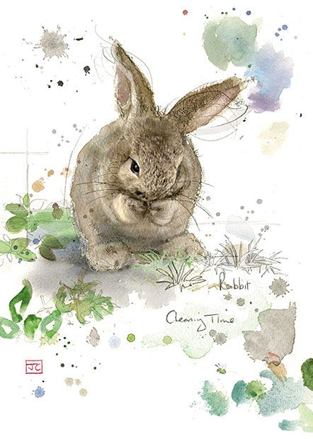 Cleaning Rabbit - Bug Art greeting card