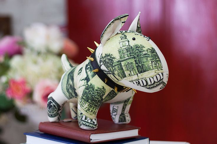 Benjamin the Bull Terrier • Stonemask