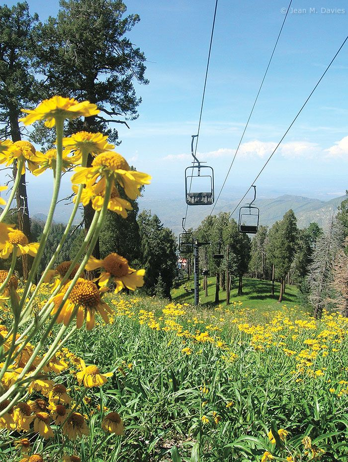 Mount Lemmon Sky Ride, near Tucson, Arizona: this is one of my favorite childhood memories <3