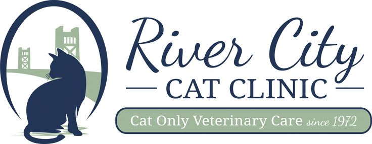 River City Cat Clinic Contact Us