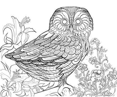 Mejores 77 imágenes de Páginas para colorear en Pinterest | Libros ...
