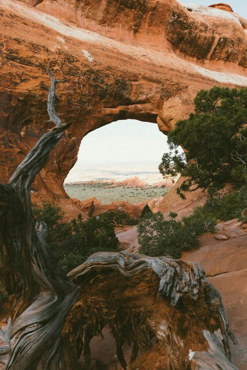 heyimchandler:  Looking through Partition Arch in Arches...