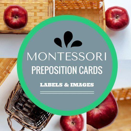 Montessori Preposition Cards