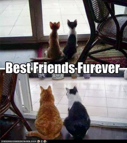 Best friends. They're there when you're young and thin and they're there when you're old and fat. That's true friendship