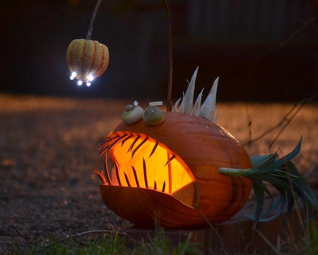 Best ocean pumpkins images on pinterest