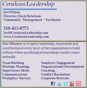 Jeri Wilson, Director Client Relations, Cerulean Leadership