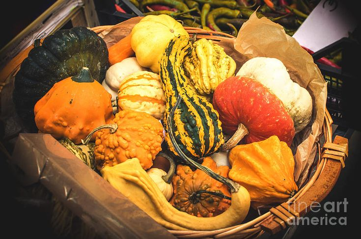 Composition Of Various #Gourds In A Basket With Vignetting Photograph #canvas #prints #art