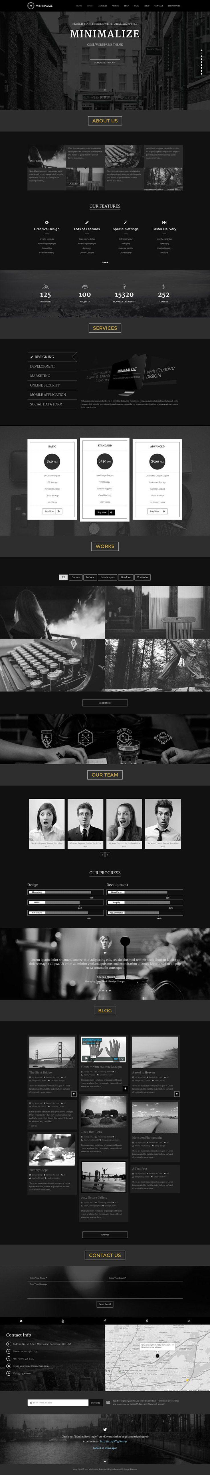 Minimalize | Single Page Theme