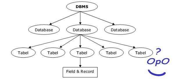 Hierarki Databases ~OpO
