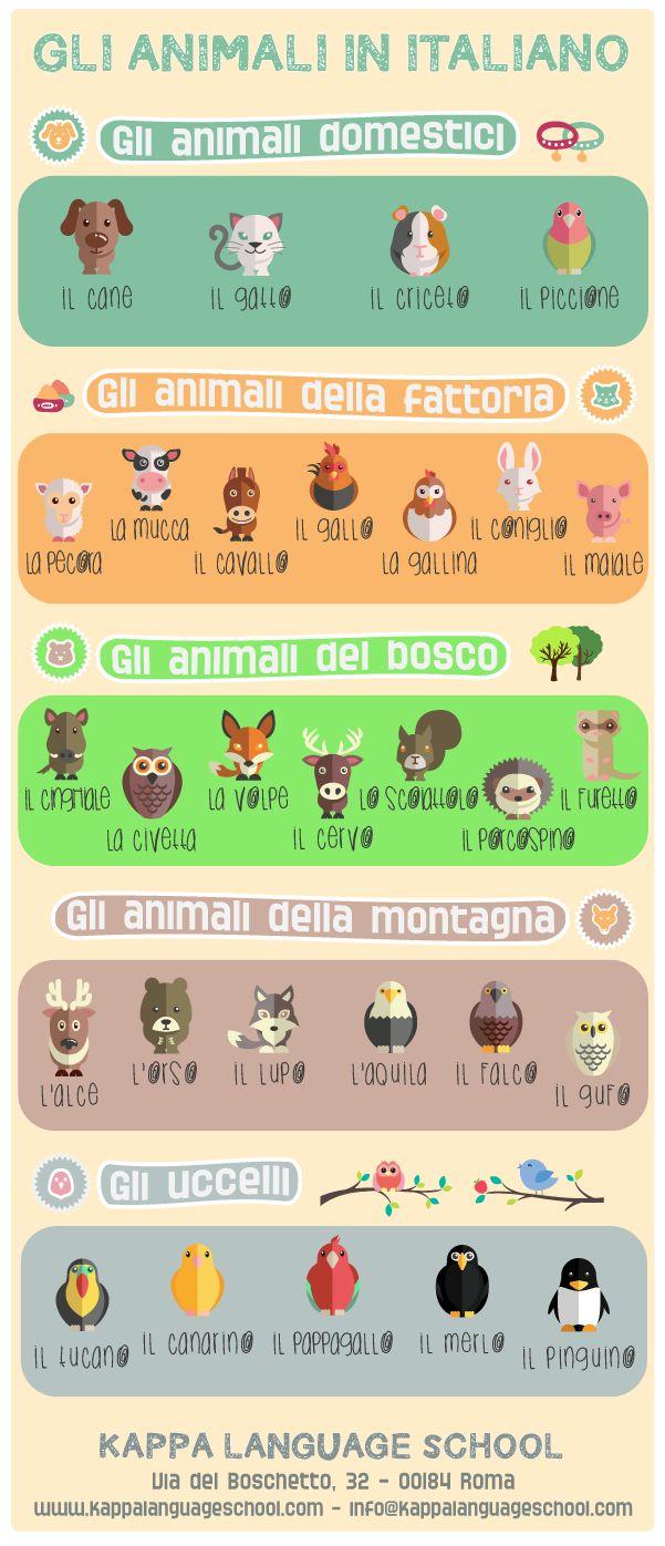 Learn Italian words: animal names, an infographic!
