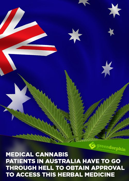Australia's First Federally Approved Cannabis Patient