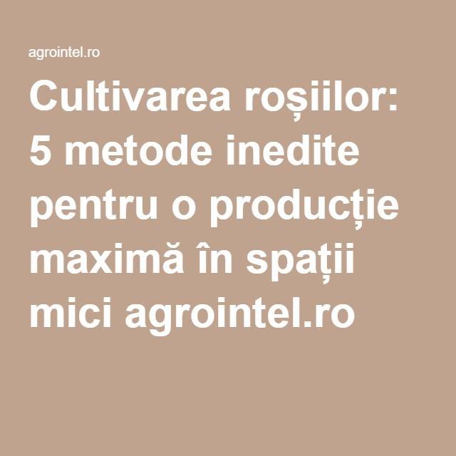 Cultivarea roșiilor: 5 metode inedite pentru o producție maximă în spații mici agrointel.ro