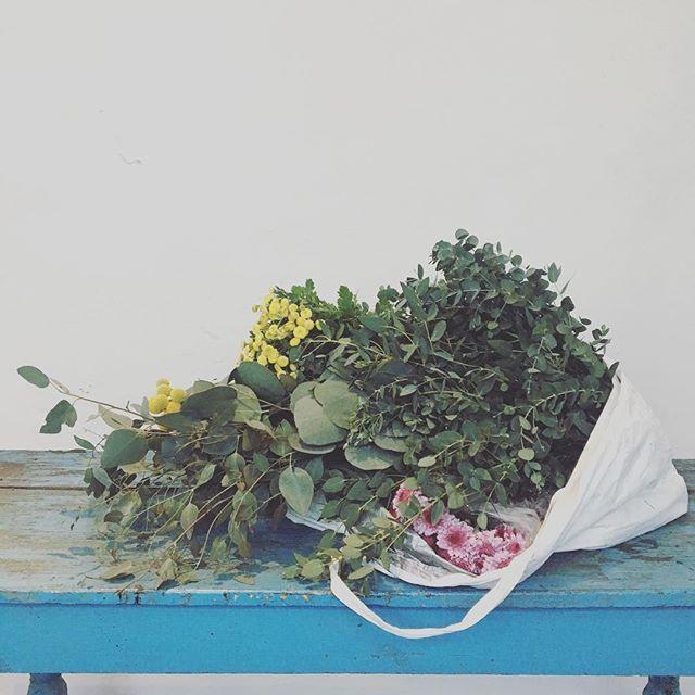 Flores check! ✅ Hoy Presentación princesa chocolata 🙌🏼 Nota. De los mayores placer en la vida es ir a comprar flores al mercado :) Instagram 👇🏼 @princesachocolata