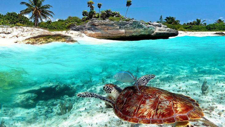 #PlayaDelCarmen, lugar idílico en el corazón de la #RivieraMaya http://www.reservarhotel.com/mexico/hoteles-en-playa-del-carmen/ #México #reservarhotel #hotelenPlayaDelCarmen