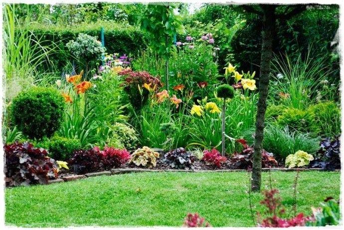Zurawki Zogrodemnaty15 Plants Pergola