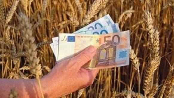 Ministrul Agriculturii a anuntat că Guvernul va decide joi noi măsuri pentru sprijinirea agricultorilor în obtinerea de credite mai avantajoase privind cumpărarea de terenuri, capital de lucru si investitii