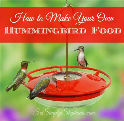 Added just a touch of cranberry for colour - anything more then a few drops they will not like.. :) The Perfect Hummingbird Food Recipe