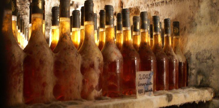 Moulded-bottles-2.jpg (immagine JPEG, 3495×1731 pixel)