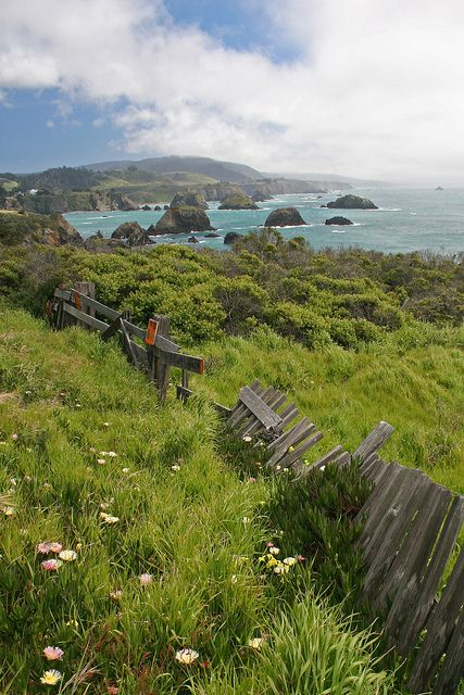 Nor-Cal, Mendocino County | California (by Brad-Miller)