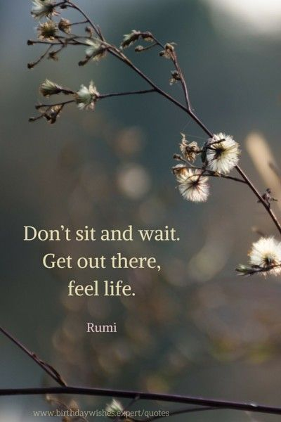 Don't sit and wait. Get out there, feel life. Rumi More