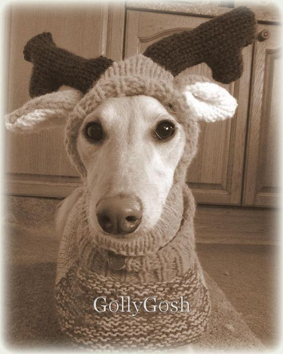 Knitting Pattern For Reindeer Hat : PDF Knitting Pattern for a Reindeer Antler Hat for Dogs - Instant Download by...