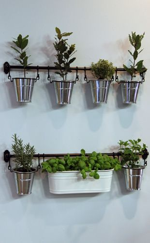 Indoor herb garden in small pots hanging from a bar in front of the kitchen window