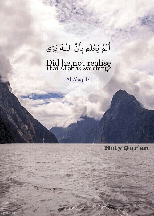 Qur'an Al-`Alaq (The Clot) 96:14:  Does he not know that Allah sees?