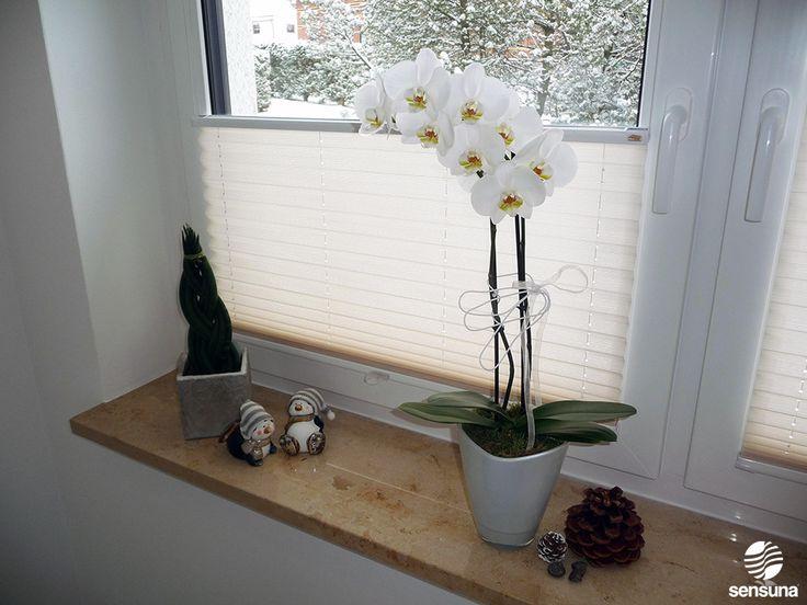 Elegant Dezent und dennoch eindrucksvoll helle Plissees von sensuna PlisseeWohnzimmer