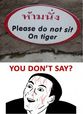 please, do not sit on tiger