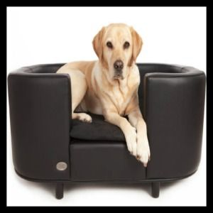 Luxury Leather Dog Beds - Chester & Wells Luxury Dog Beds