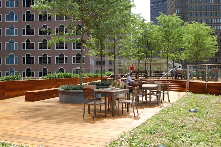 11 best images about green roofs and roof decks on for 211 roof terrace cafe