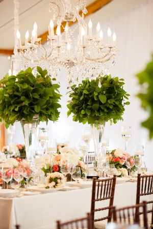 I love these tall foliage centrepieces in clear vases. A great way to bring the outdoors in without breaking the bank. We could then accent them with small flower arrangements in between, or by having a single stem on each person's plate