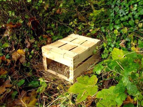 Les 25 meilleures id es concernant abri pour h risson sur pinterest cabane a insecte insecte for Recherche jardinier pour entretien jardin