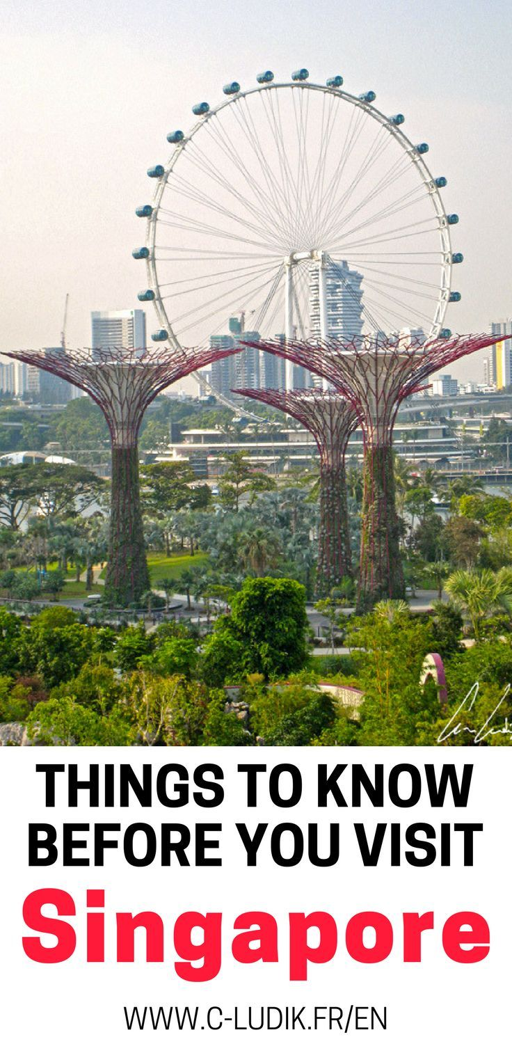 Singapore is a beautiful vacation destination with so many awesome attractions. We will share our favorite things to do in Singapore, things to see in Singapore and some background on the culture of Singapore. Make sure you save this Singapore guide to your travel board so you can find it.