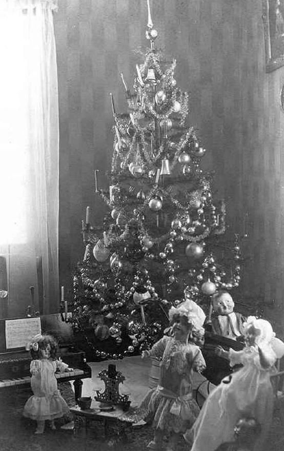 Vintage Christmas Photo of Tree and Dolls, early 1900s,