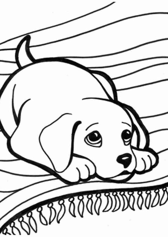 How To Train Your Newly Adoped Dog Read More Info By Clicking The Link On The Image Dogslove Puppy Coloring Pages Dog Coloring Page Animal Coloring Pages