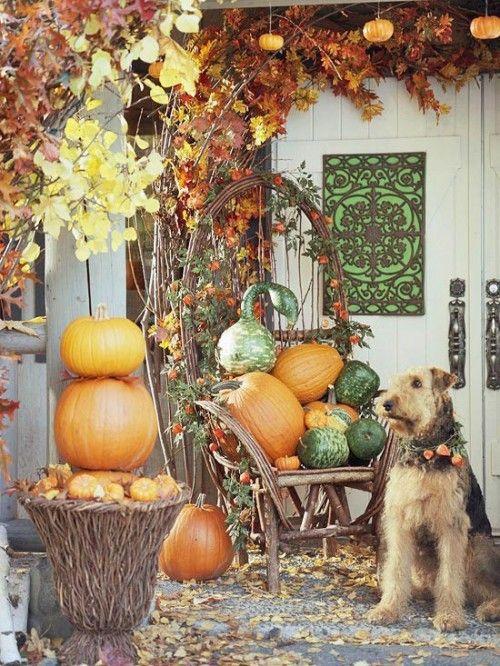 Acrylic Mums Fall Autumn Paint Night