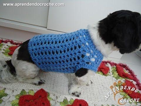 Roupinha de Crochê Cãozinho Fashion http://aprendendocroche.com/receitas-de-croche/video-aula.asp?func=display&resid=1290&tree=12