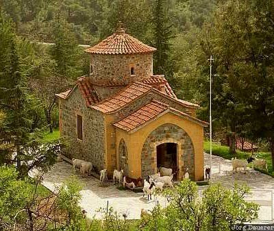 Church and goats.. Troodos mountains, Cyprus | Jörg Dauerer Photography