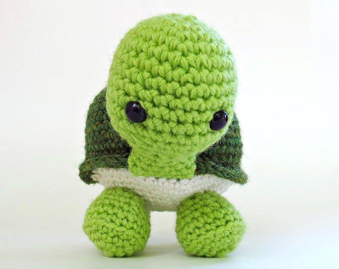 Noah the turtle