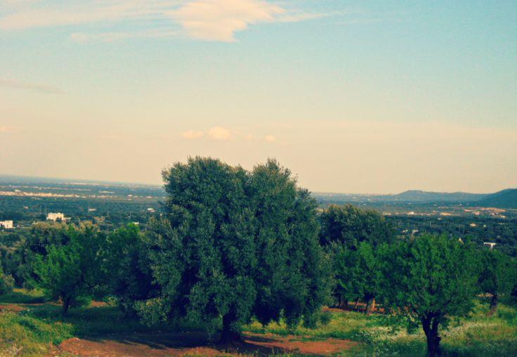 Scendendo dalle colline.