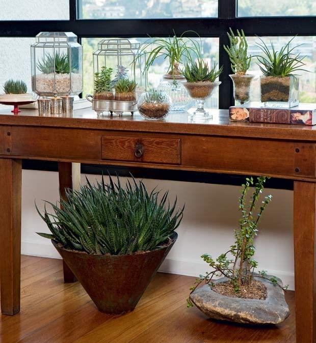 Projeto do paisagista Odilon Claro, da Anni Verdi suculentas-aparador-vasos (Foto: Edu Castello/Editora Globo)